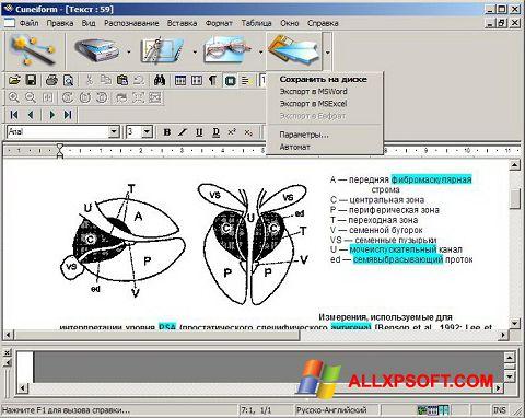 截圖 CuneiForm Windows XP
