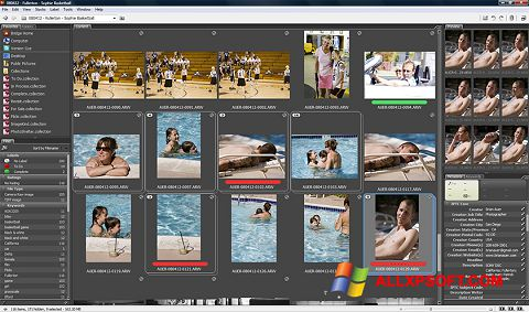 截圖 Adobe Bridge Windows XP