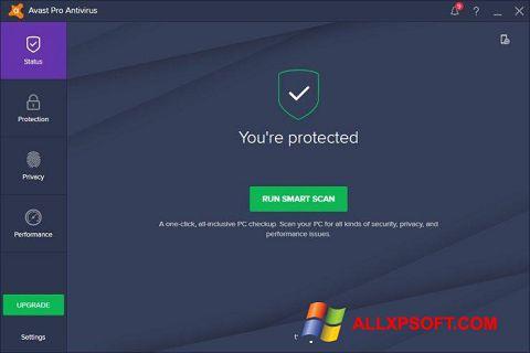 截圖 Avast! Pro Antivirus Windows XP